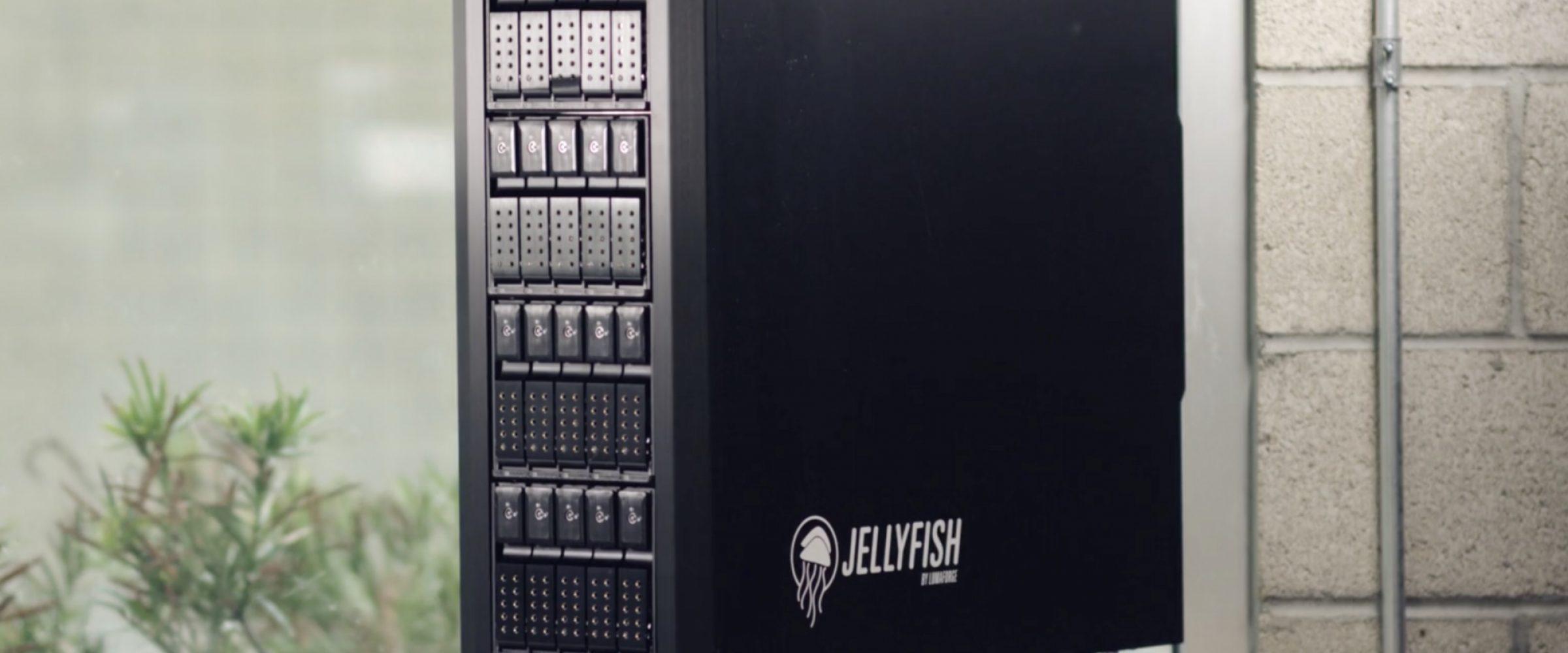 Jelyfish lineup blog hero